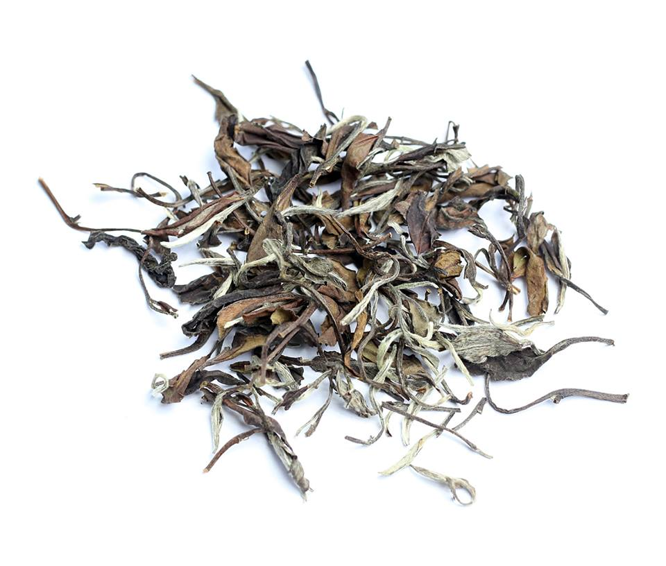 Shomei bijeli čaj - TEA TIME ONE